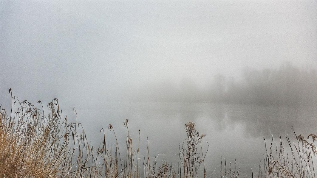 hamburg-elbe-nebel-alsterschmuck-3