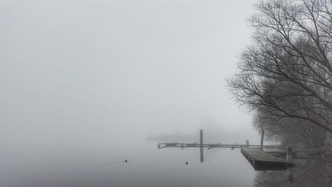 hamburg-elbe-nebel-alsterschmuck